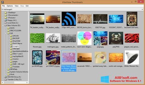 Képernyőkép IrfanView Windows 8.1